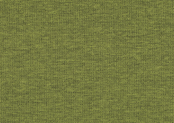 Lina 0024 von Carpet Concept | Wandtextilien