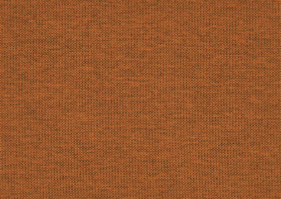 Lina 0036 by Carpet Concept | Wall fabrics