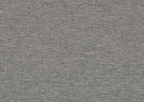 Lina 0065 by Carpet Concept | Wall fabrics