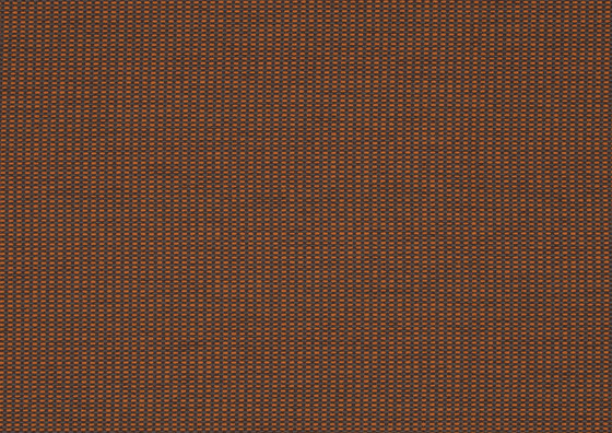 More 0038 by Carpet Concept | Wall fabrics