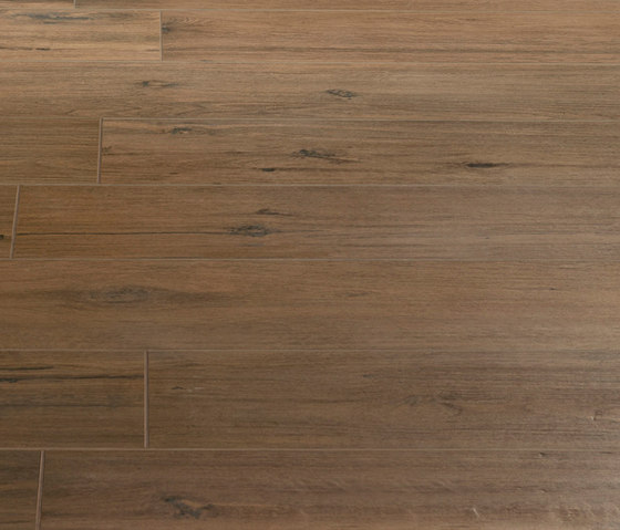Roots Cannella by Caesar | Tiles