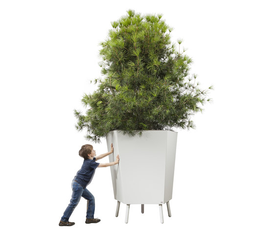 Elevation Giant by FLORA | Flowerpots / Planters