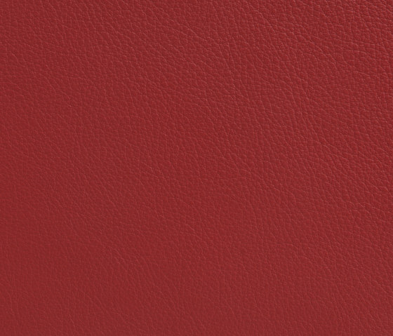 Elmonordic 35004 by Elmo Leather | Natural leather