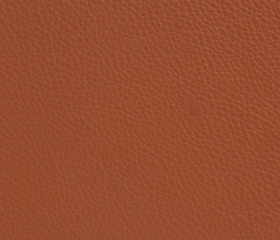 Elmonordic 43404 by Elmo | Natural leather