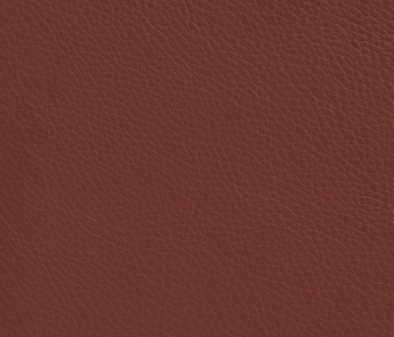 Elmonordic 53374 by Elmo | Natural leather