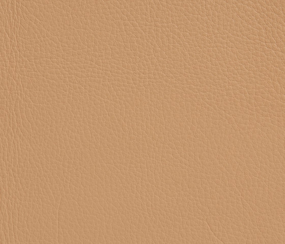 Elmonordic 22025 by Elmo | Natural leather