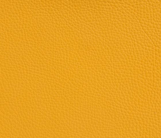 Elmonordic 04370 von Elmo | Naturleder