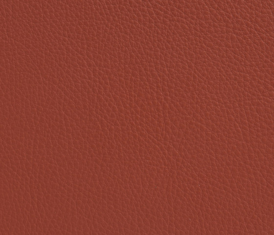 Elmonordic 33373 by Elmo | Natural leather