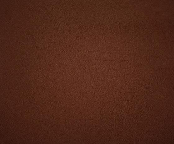 Elmosoft 33001 de Elmo | Cuero natural