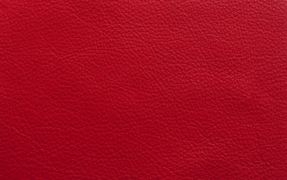 Elmosoft 55002 by Elmo | Natural leather
