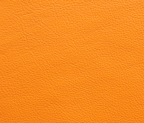 Elmosoft 45016 by Elmo | Natural leather