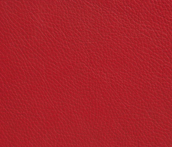 Elmoline 55013 by Elmo | Natural leather