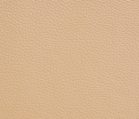 Elmoline 02007 by Elmo Leather | Natural leather
