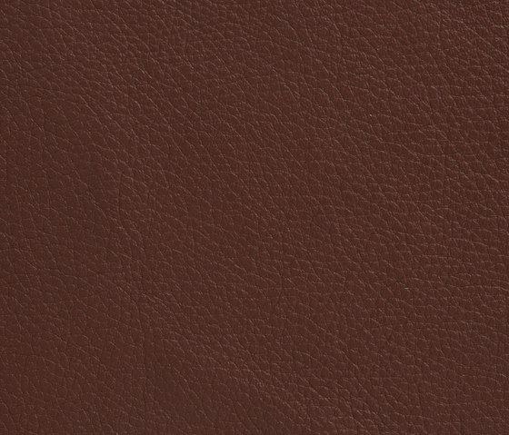 Elmoline 33023 by Elmo | Natural leather