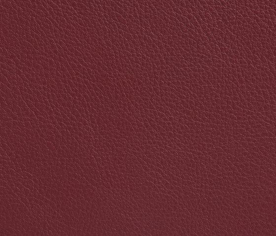 Elmotech 55014 von Elmo | Naturleder