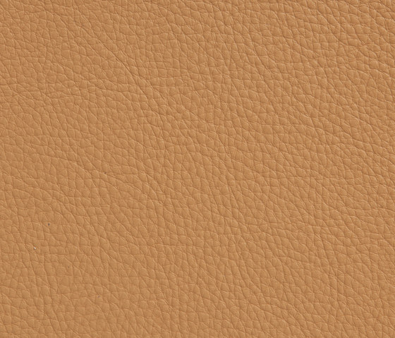 Elmotech 44002 by Elmo | Natural leather