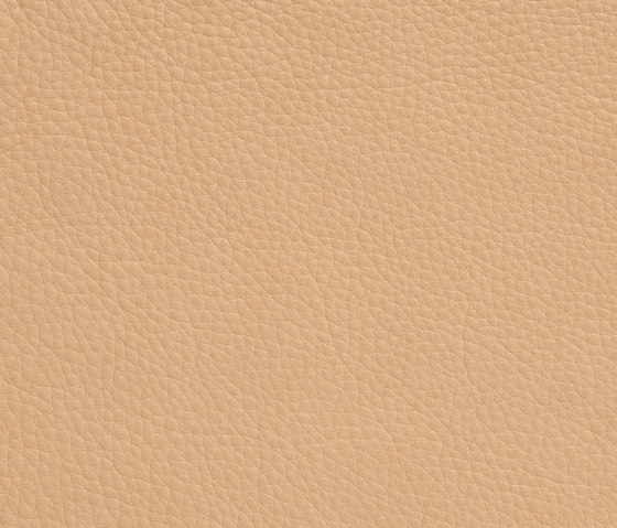 Elmobaltique 02001 by Elmo | Natural leather