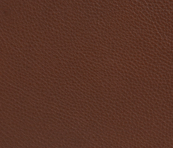 Elmobaltique 33037 by Elmo | Natural leather