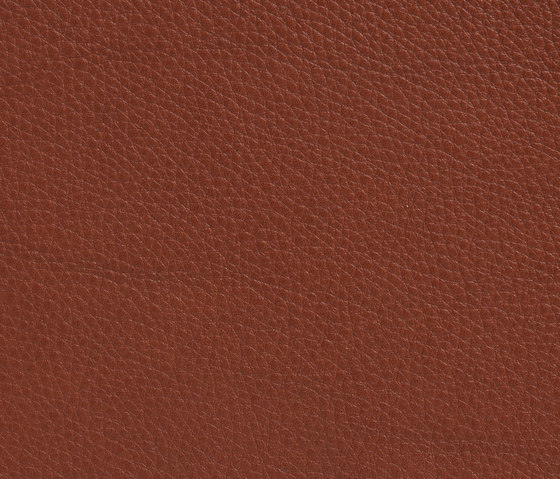 Elmobaltique 33441 by Elmo | Natural leather