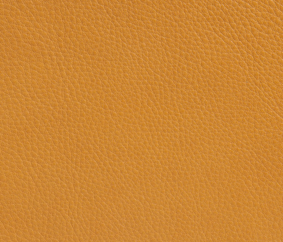 Elmobaltique 44038 by Elmo | Natural leather