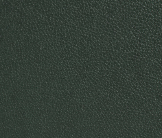 Elmobaltique 98001 by Elmo | Natural leather
