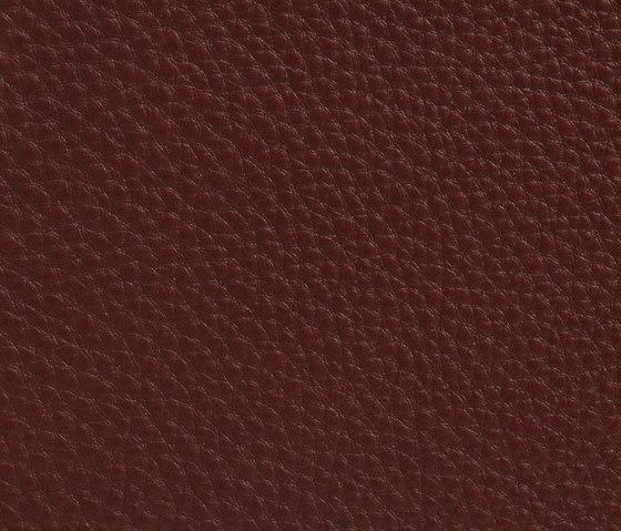Elmogrand 53007 de Elmo | Cuero natural