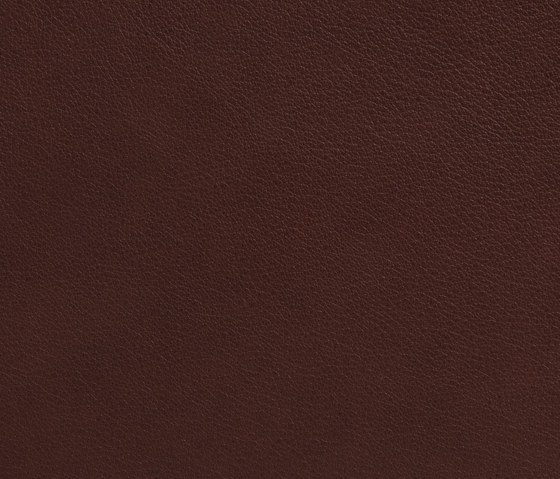 Elmotique 93957 by Elmo | Natural leather