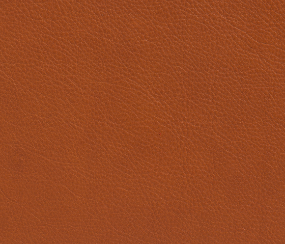 Elmotique 43807 by Elmo | Natural leather