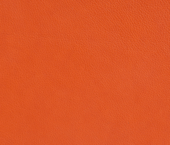 Elmotique 45011 by Elmo | Natural leather