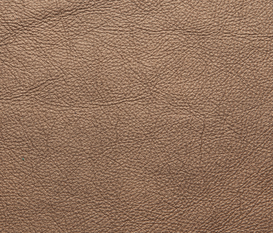 Elmotreasure 43130 by Elmo | Natural leather