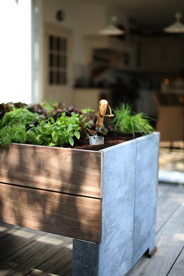 Cult de TRADEWINDS   Macetas plantas / Jardineras