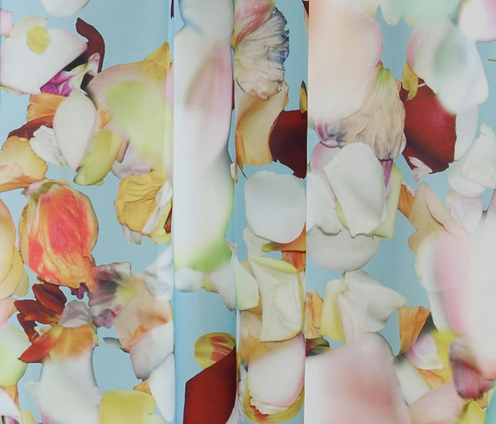 Blossom S by Création Baumann | Curtain fabrics