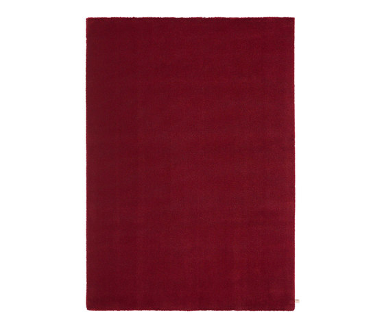 Velvet Ruby Red 100 by Kasthall | Rugs / Designer rugs