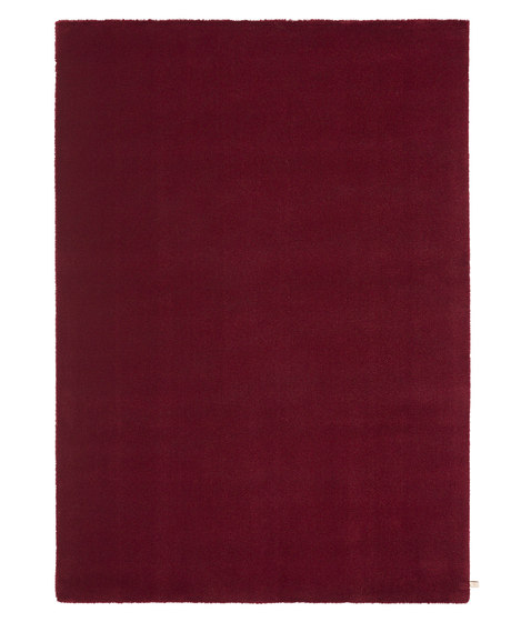 Velvet Pearl | Ruby Red 100 de Kasthall | Tapis / Tapis design