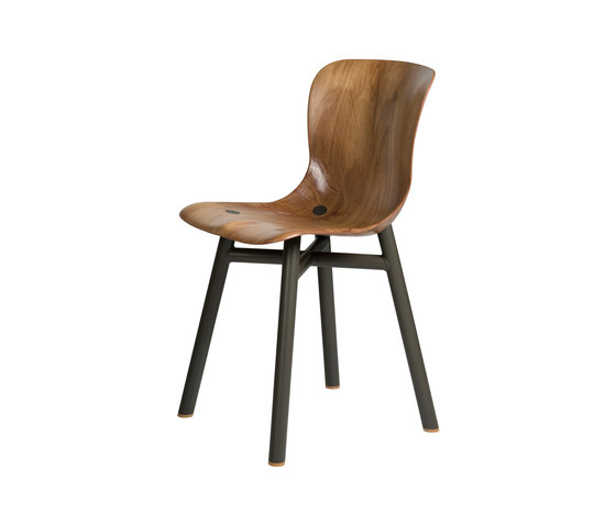 Wendela chair by Functionals | Restaurant chairs