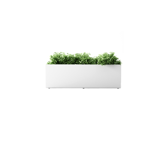 Crepe L by Systemtronic | Plant holders / Plant stands