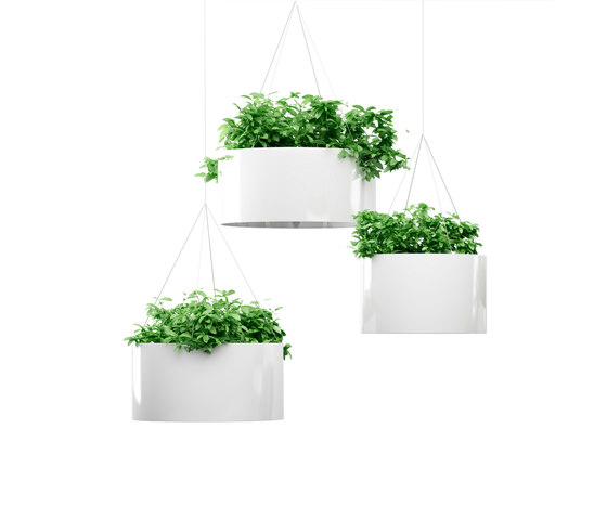 Green Cloud Hanging by Systemtronic | Plant pots