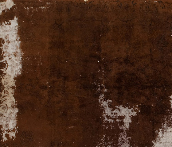 Decolorized brown by GOLRAN 1898 | Rugs / Designer rugs