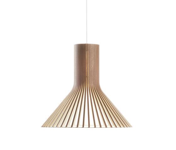 Puncto 4203 Pendelleuchte von Secto Design | Allgemeinbeleuchtung
