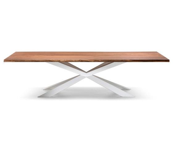 Spyder Wood di Cattelan Italia | Tavoli da pranzo