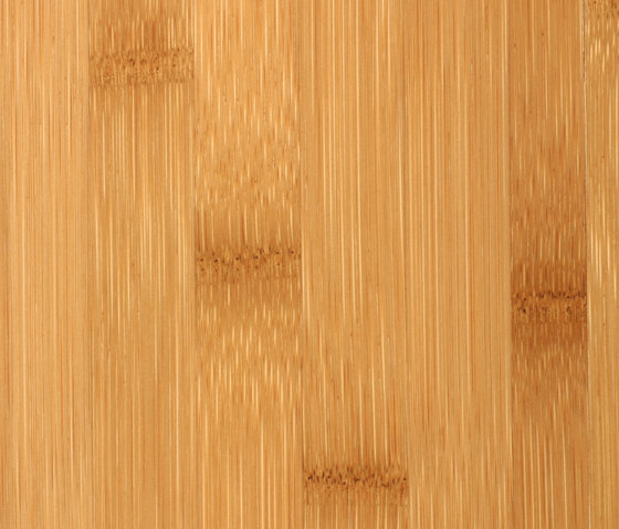 Purebamboo plainpressed caramel by MOSO bamboo products | Bamboo flooring