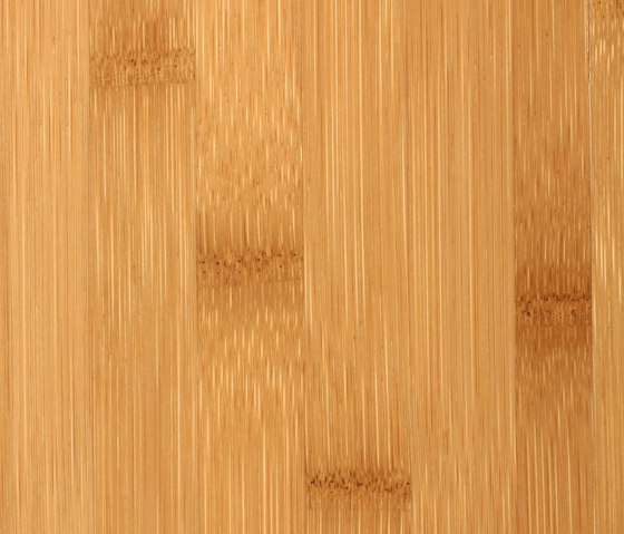 Bamboo Sumpreme plainpressed caramel by MOSO bamboo products | Bamboo flooring