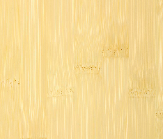 Bamboo Sumpreme plainpressed natural by MOSO bamboo products | Bamboo flooring