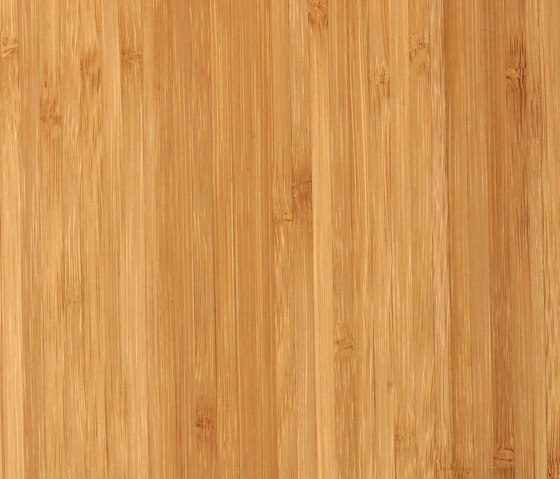 Bamboo Sumpreme sidepressed caramel by MOSO bamboo products | Bamboo flooring