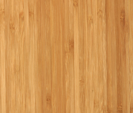 Bamboo Elite sidepressed caramel by MOSO bamboo products | Bamboo flooring