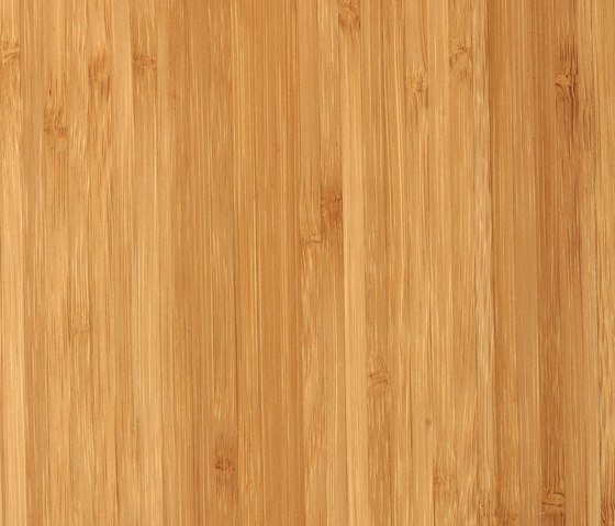Bamboo Plex sidepressed caramel by MOSO bamboo products   Bamboo flooring
