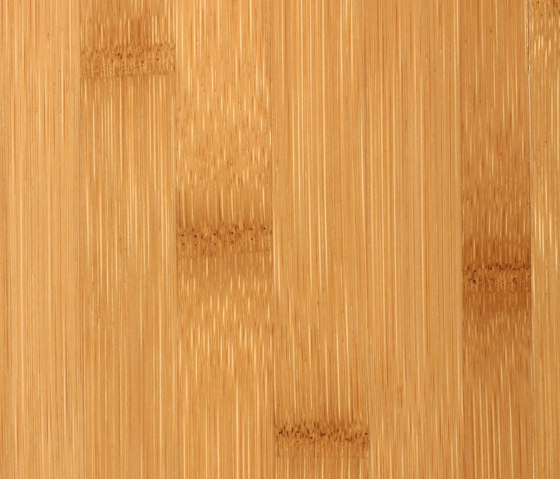 Bamboo Noble plainpressed caramel by MOSO bamboo products | Bamboo flooring