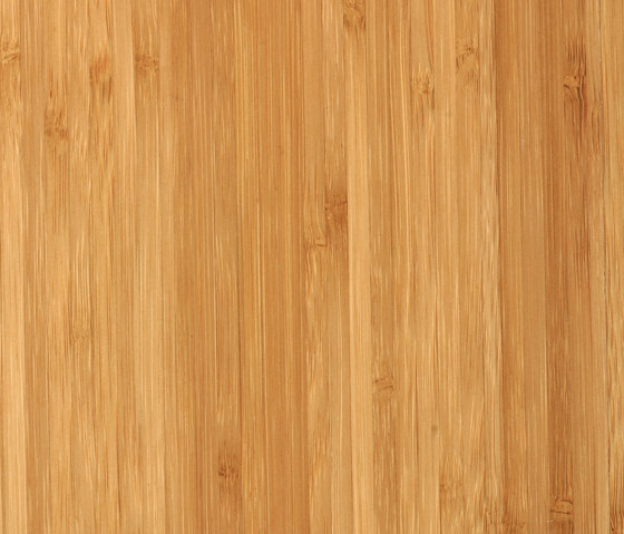 Bamboo Noble sidepressed caramel by MOSO bamboo products | Bamboo flooring