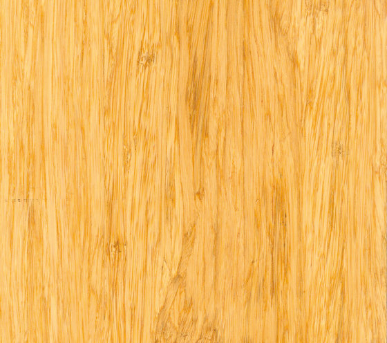 Solid panel high density natural by MOSO bamboo products | Bamboo panels