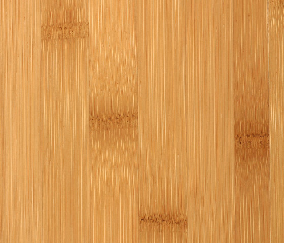 Solid panel plainpressed caramel by MOSO bamboo products | Bamboo panels